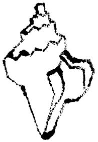 巻き貝イラスト無料素材
