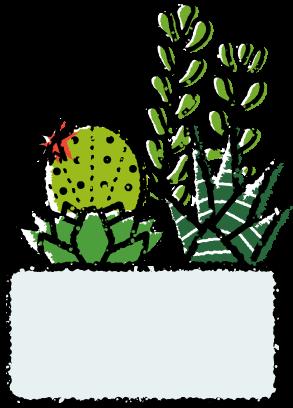 多肉植物寄せ植えイラスト無料