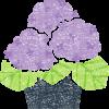 鉢植えのあじさい無料イラスト