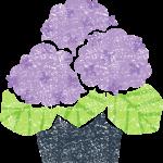 かわいい鉢植えのあじさい無料イラスト素材