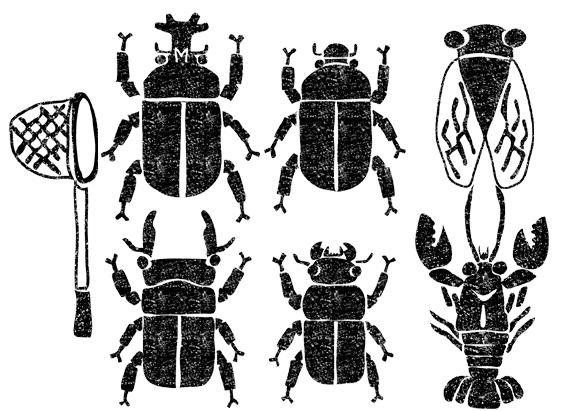 夏の虫虫取りイラスト白黒無料