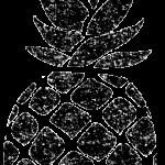 パイナップル白黒イラスト無料素材