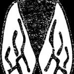 セミイラスト白黒無料素材
