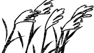 お月見十五夜ススキイラスト白黒