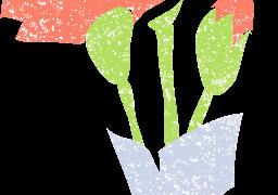 カーネーション花束イラスト無料素材