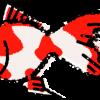 金魚イラスト無料素材