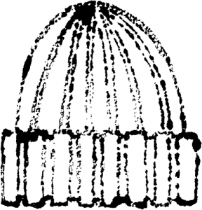 かわいいニット帽イラスト白黒無料素材