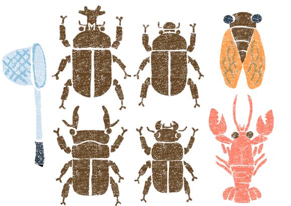 夏の虫イラスト無料素材