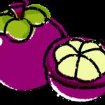 かわいいマンゴスチンイラスト無料素材