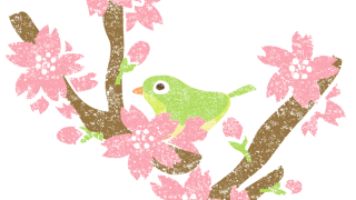 桜の花イラスト無料素材