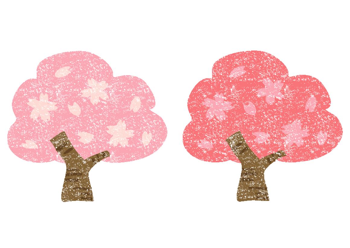 桜の木イラスト無料素材