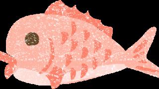かわいい鯛イラスト無料素材