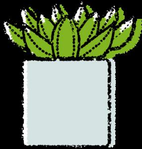かわいい多肉植物イラスト無料素材エケベリア