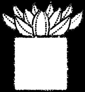 かわいい多肉植物イラスト無料素材白黒エケベリア