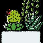 かわいい多肉植物寄せ植えイラスト無料素材