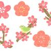 おしゃれかわいい梅の花イラスト無料素材